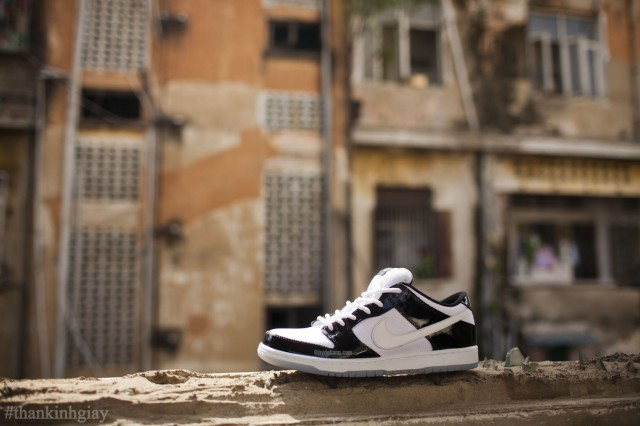 nike-sb-dunk-low-concord-summer-2013-1