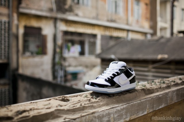 nike-sb-dunk-low-concord-summer-2013-3