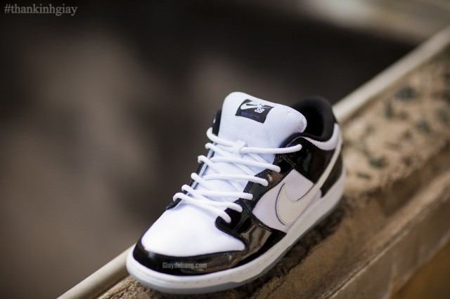 nike-sb-dunk-low-concord-summer-2013-4
