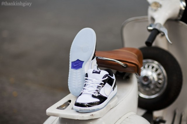 nike-sb-dunk-low-concord-summer-2013-5