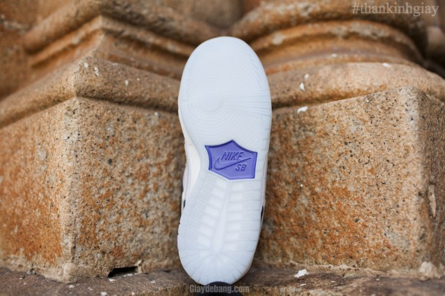 nike-sb-dunk-low-concord-summer-2013-8