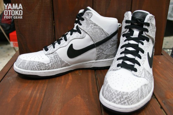 nike-dunk-hi-snake-pack-fall-13-5
